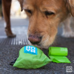 Living Plastic-Free With Compostable Dog Waste Disposal Bags
